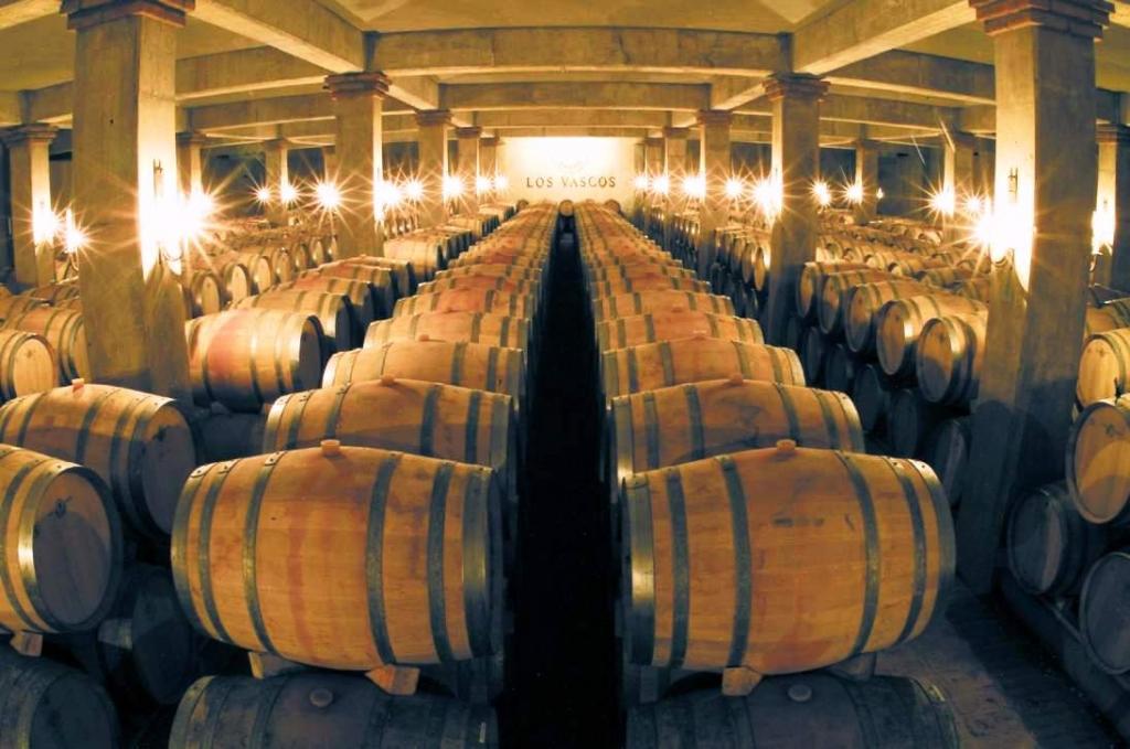 Los-Vascos-cellars